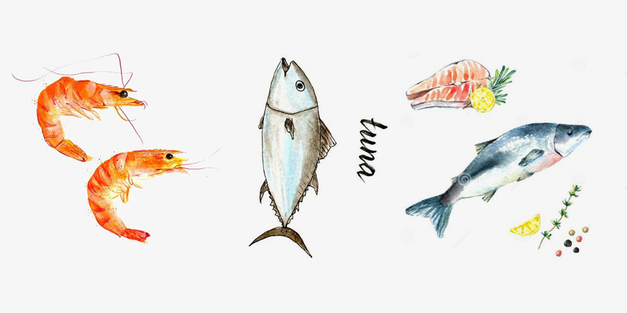 虾  灌装淡金枪鱼  鲑鱼(三文鱼)
